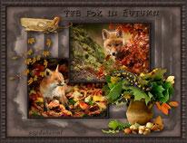The Fox in Autumn