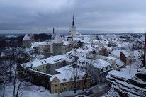 Ausblick auf die Altstadt Tallinns