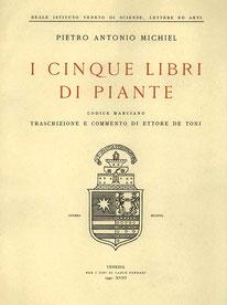 Pietro Antonio Michiel