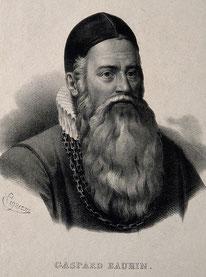 Gaspard Bauhin,  1560-1624