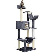guter bester Katzenbaum kaufen billig guenstig test tipps erfahrungen meinungen vergleich online bestellen sparen schnaeppchen