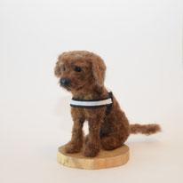 Abbild Hund, Skulptur Haustier, Hunde Portrait, Porträt Hund, Filzskulptur Hund, Hund Abbild, Miniatur Skulptur Hund, Massanfertigung Hund, Massgeschneiderter Hund Filz, Haustierminiatur, Miniaturhund, Wollskulptur Hund, Hund nadelfilzen, Andenken Hund