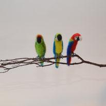 Papagei nadelgefilz, papagei aus Wolle, Papagei gefilzt, Tierskulpturen, Spezialanfertigung Vogel, Filztiere,
