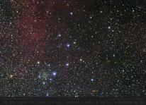 IC 1311