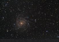 NGC 342  -  1200mm