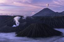 Projekte, Vulkane, Deutschland, Spinnen © Martin Siering Photography