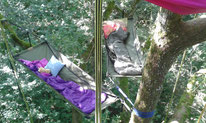 Les Tas De Nature, bivouac, des hamacs dans les arbres,  Pau, insolite