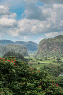 Vinales Valley View