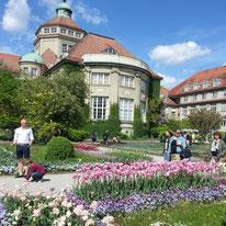Munich botanical garden by susannemtaylor