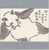 パンダ 赤ちゃん誕生