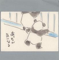 臥龍パンダ