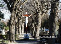 Friedhofskreuze  © Mag. Angelika Ficenc