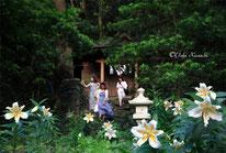御蔵島ドルフィンスイムサクユリと神社