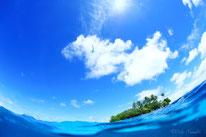 ドルフィンスイムやスキンダイビングができるジープ島