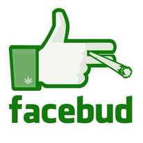 guide coffeeshop et cannabis sur facebook