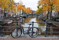 Coffee Weed Shops Amsterdam