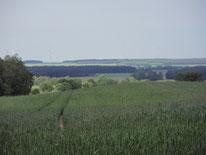 Blick von Schlenzer Richtung Luckenwalde