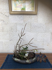 主人お気に入りの絵とコラボ1/ニシキギ、ヒイラギ(日本のもの)、 クリスマスローズ、 シモヤケシタバ