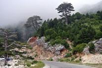 Llogara-Pass (Albanien)