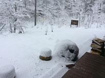 1月18日の朝。すごい雪・・・