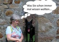 Hundephysiotherapie Heike Amthor in Leipzig Stötteritz, Krankengymnastik und Massage bei Arthrose, Hüftdysplasie, Kreuzbandriss