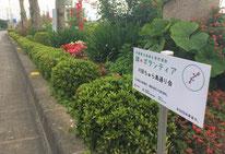 緑のボランティア 道路ボランティア 沖縄県緑化推進委員会