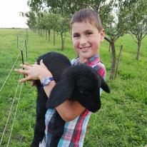 Jakob mit Schaf