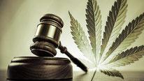cannabis leglisation