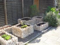 Hochbeet, Gabione, Steinmauer, Amriswil, Gartenbau, Gärtner