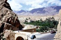 El Kantara - Numidie - Algérie