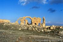 Haïdra - Ammaedara