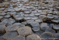 Irlande du Nord - Chaussée des Géants - GB - Giant's Causeway