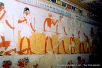 TT 69 Menna - Vallée des nobles - Egypte