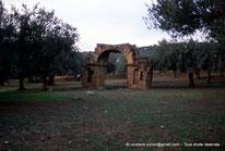 Sidi Ali-Bel-Kassem (Thuburnica)