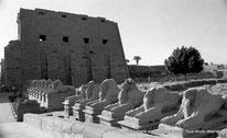 Karnak - Parvis du Temple - Dromos - Chapelle d(Achoris - Rampes d'accés Taharqa - Obélisque Séthi II