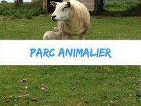 animaux-camping-la-haie-penee-4-etoiles-baie-de-somme