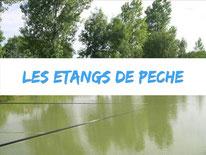 camping-peche-picardie-cote-mer-location-plage-marquenterre-piscine-etang-location-4etoiles