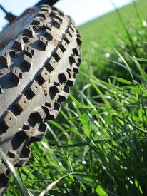 Mountainbike Reifen