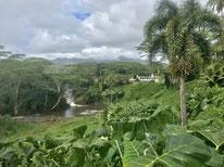 カウアイ島プライベート観光ツアー