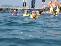 ワンポイントレッスン:イルカと泳ごう