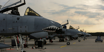 USAF: gli A-10 Warthog indispensabili per combattere l'ISIS.