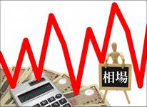 自社株式の株価算定業務