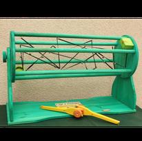 Cage à élastique coopératif