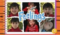 El libro de los sentimientos