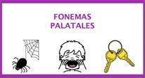 Fonemas palatales
