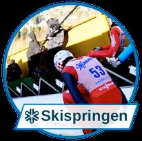 Schneesysteme für höchste Ansprüche: Skispringen