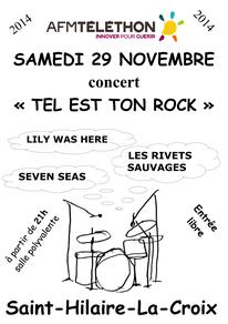 Tel est ton rock 29 novembre 2014 Saint Hilaire la Croix