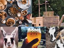 Tips voor Fietsers - Fietsen in en om Antwerpse Kempen 2020 - Kinderboerderij De Lentehei