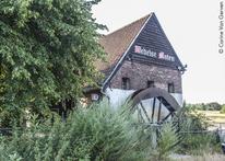Tips voor Fietsers - Fietsen in en om Limburg 2019 - Wedelse Molen Pelt