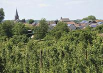 Tips voor Fietsers - Fietsen in en om Limburg 2020 - Dienst Toerisme Kortessem
